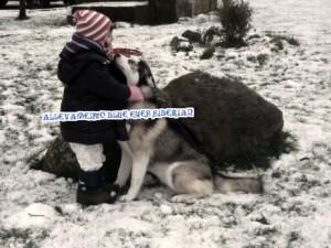siberian-husky-gioca-bambino-neve