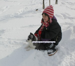 foto-cuccioli-siberian-husky-allevamento-blue-eyes-140