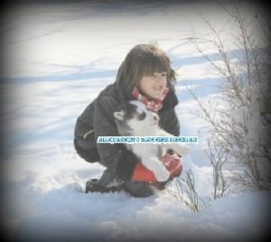 foto-cuccioli-siberian-husky-allevamento-blue-eyes-159