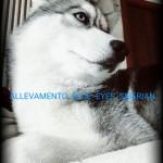 PicsArt_11-09-07.36.55