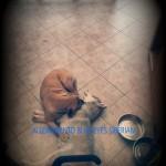 PicsArt_01-09-04.47.06