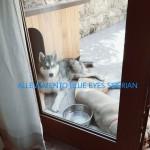 PicsArt_01-09-04.48.10