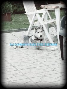 PicsArt_01-09-05.10.50
