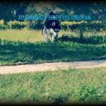 PicsArt_01-10-05.16.11